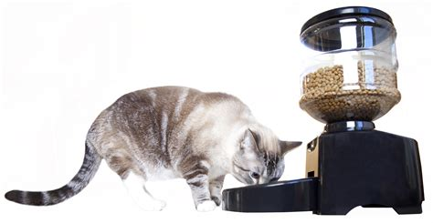 Pet Feeder Pet Supplies Mota Dinner Pet Feeder Automatic