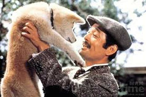 Japanese classic film Hachiko to screen in March - Massey ... Hachiko Movie