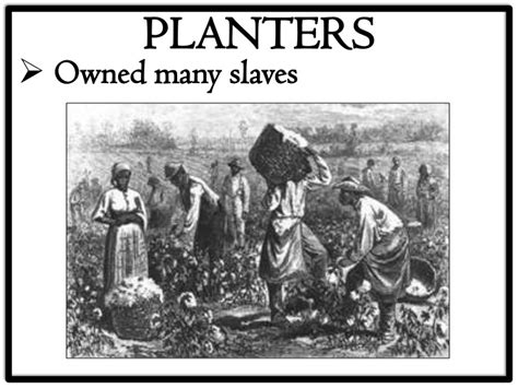 What Did Most Rich Southern Planters Do With Their Wealth by 13 2 Southern Society