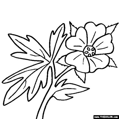 okeffe colouring pages