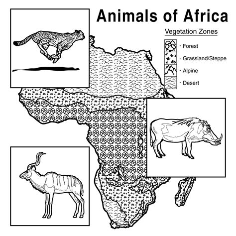 african cats coloring pages clip art giraffe b w abcteach