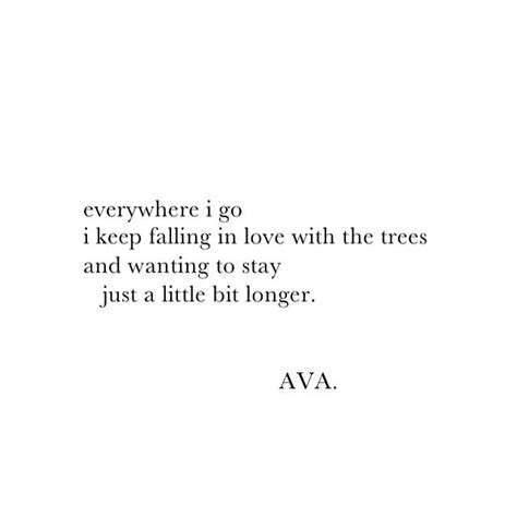 The Missing Place best 25 tree quotes ideas on quotes on trees