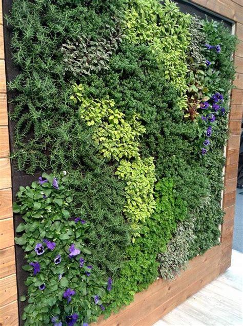 edible living wall backyard garden design verticle