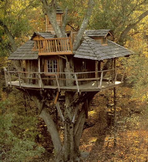 20 Tree Houses to Build for Your Kids