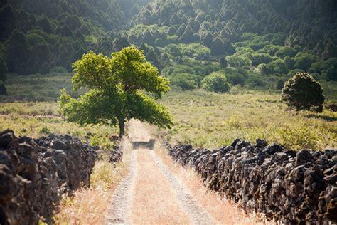el camino de las carreteras caminos y t 250 neles la palma film commission