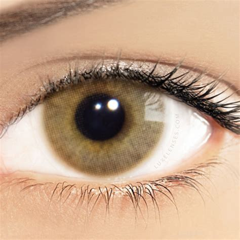 solotica colors ocre solotica hidrocor ocre hazel light brown contact lenses