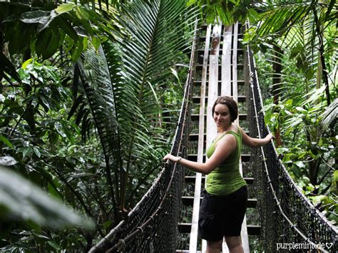 Zoologischer Garten Guadeloupe hochzeitsreise in der karibik auf der aida teil 3