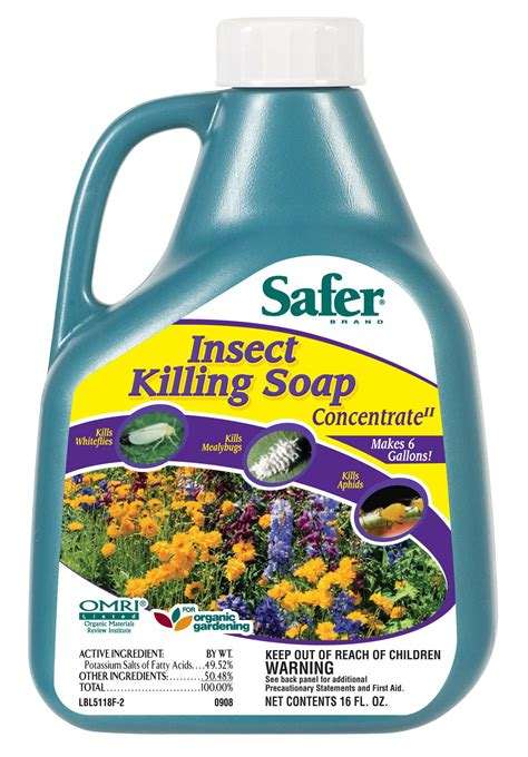 bed bug detergent safer 174 brand insect killing soap concentrate 16oz