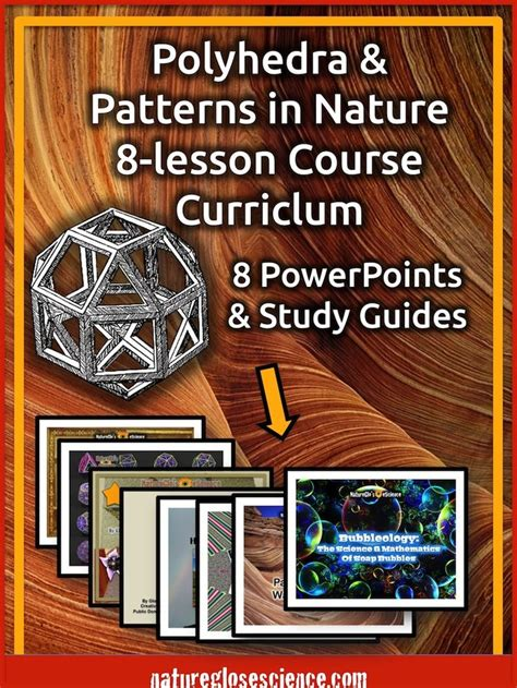 patterns in nature experiments 44 best math patterns in nature images on pinterest