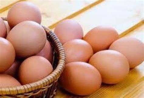 Bibit Ayam Hari Ini harga telur ayam ras hari ini selasa 02 juni 2015