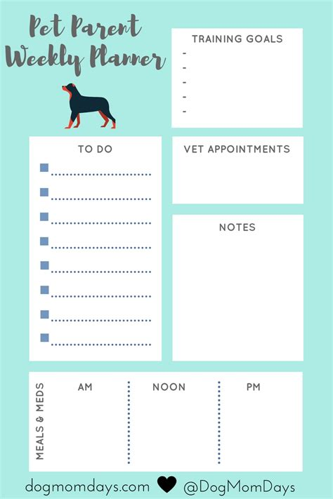 schedule for puppy how to make a schedule for your and why it s important days