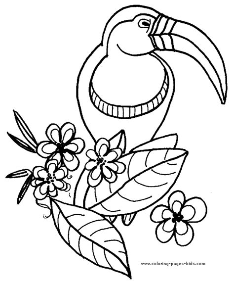 coloring pages exotic animals free coloring pages of exotic birds