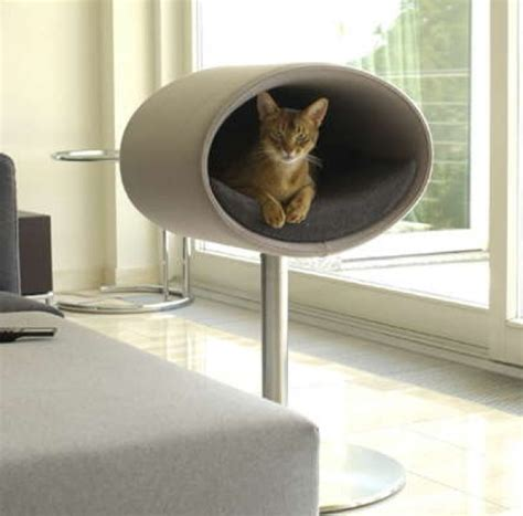 cats house design with rondo stand home design garden