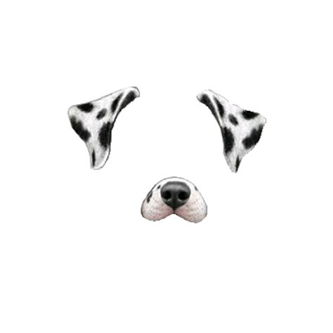 snapchat filter dalmatian dog transparent png stickpng
