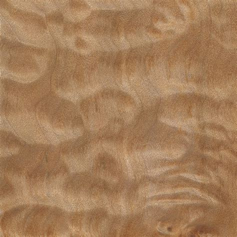 quilted maple the wood database lumber identification