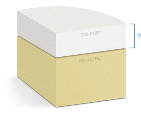 futon thickness memory foam mattress buying guide