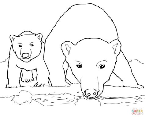 coloring page bear cub curious polar bear mother and cub coloring page free
