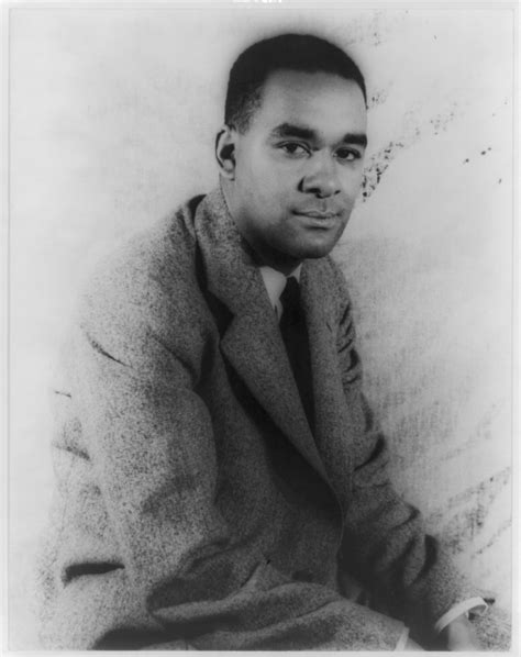 themes in the book native son richard wright author wikipedia