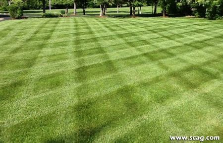 lawn pattern roller show your stripes scag power equipment customer photos