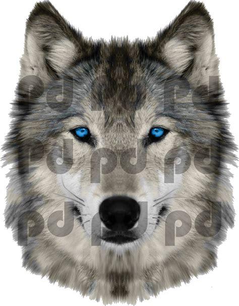 wolf wall murals 28 wolf wall mural wolf wallpaper wolf photo