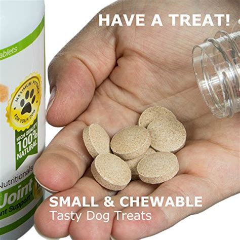 probiotic for dogs amazing probiotics for dogs 100 all easy no meas