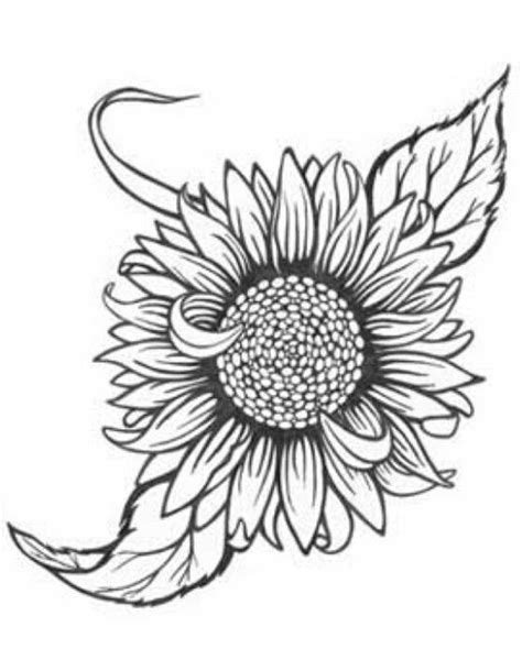 sunflower outline tattoo pin by kelsi minch on filler ideas tattoos