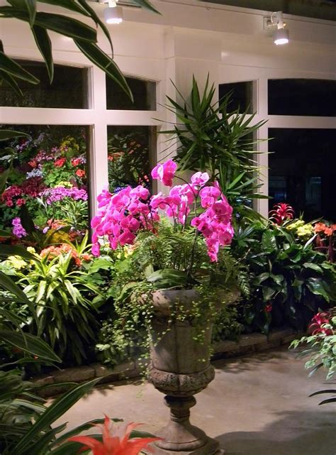 Orchid Room by Orchid Room At Butchart Gardens Photograph By Warren Thompson
