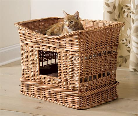 rattan cat house so that s cool