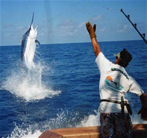 Hilton Garden Inn Pensacola Airport by Costa Rica Hotels Support Sport Fishing Tourism Villas