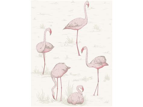 flamingo wallpaper cole and son fabulous flamingo wallpaper