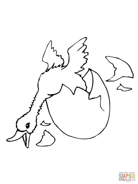 pollito en su cascaron colouring pages disegno di nascita di un anatra da colorare disegni da