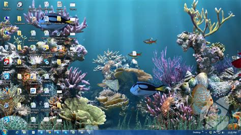 new themes animated aquarium animated wallpaper latest version 2016 free