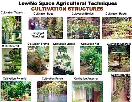 Home Business Ideas Sri Lanka Sri Lanka City Farmer News