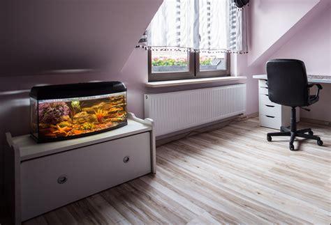 10 gallon fish tank heater top 5 best 10 gallon fish tanks fish tank club