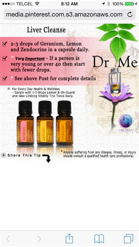Doterra Essential Oils For Liver Detox by 1000 Images About Doterra On Diffusers