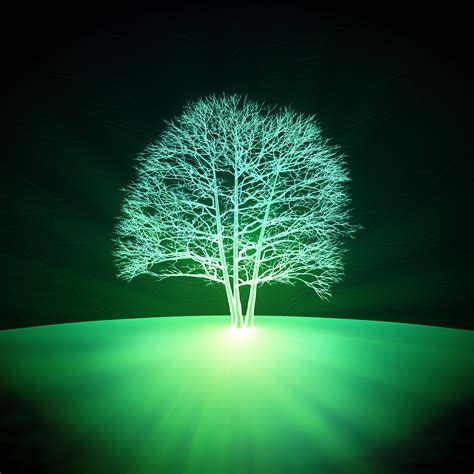 glowing green lights in trees could glowing plants be the answer to sustainable light