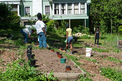 Community Garden Atlanta community garden planting photos westview atlanta