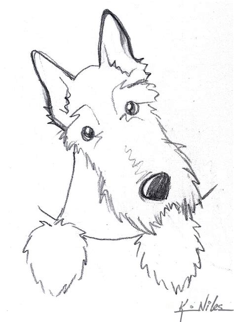 pin scottie dog color page on pinterest