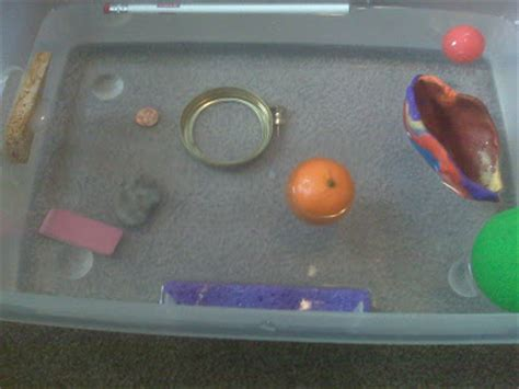 Objects That Sink And Float by Preschool What We Sink Or Float