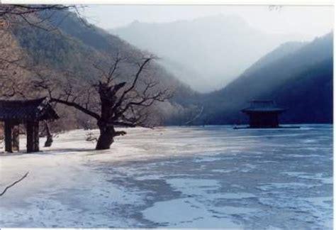 imagenes de invierno verano otoño y primavera imagenes de primavera verano oto 241 o invierno y