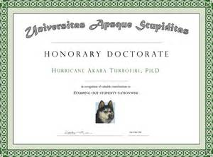 doctorate certificate template pin diploma doctorate phd ajilbabcom portal on