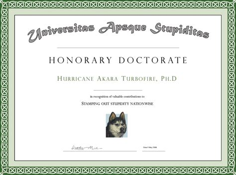 doctorate degree certificate template phd degree phd degree template