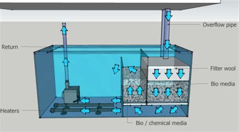 reef aquascape designs – Reef tank aquascaping on pvc   YouTube