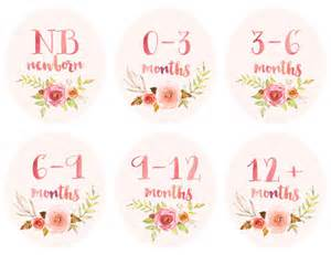 baby infant clothing printable tags labels dividers for