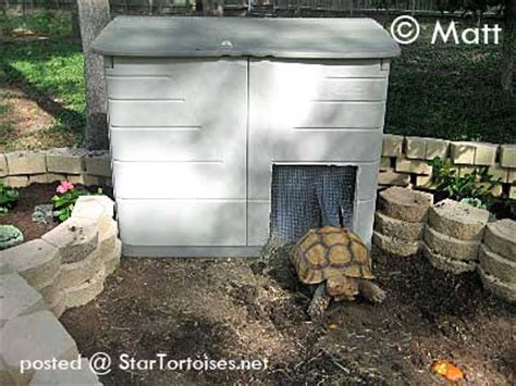 sulcata tortoise house diy heated tortoise house petdiys com