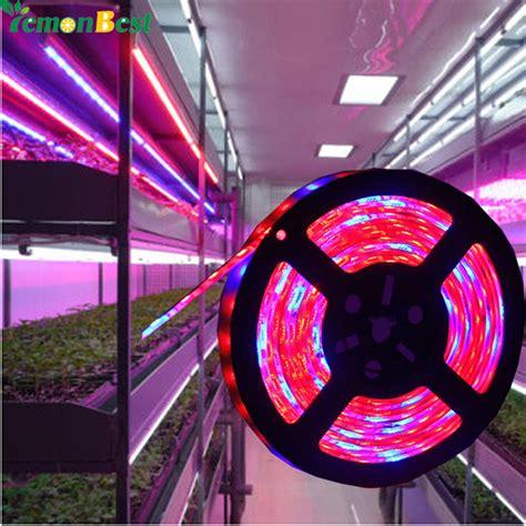 12v dc led grow lights dc 12v led grow l 5050 grow led flexible strip tape