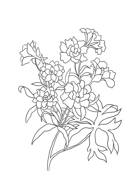 flower to color flower coloring pages