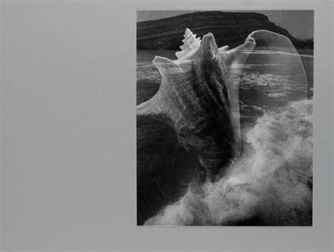 Muschel Tafeln by Groebli R Die Muschel Hommage Au Feminin Mit 47 Origi