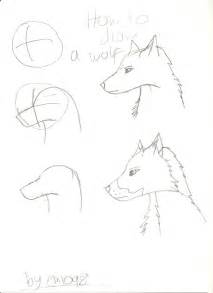 how to draw a wolf by darkbroodingvillain on deviantart
