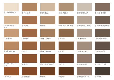 colors for brown brown pantone color chart color brown